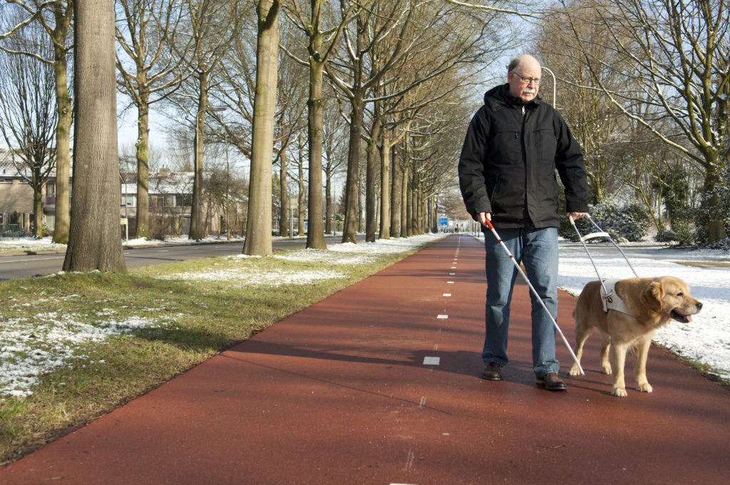 Public Rights-of-Way Accessibility Guidelines